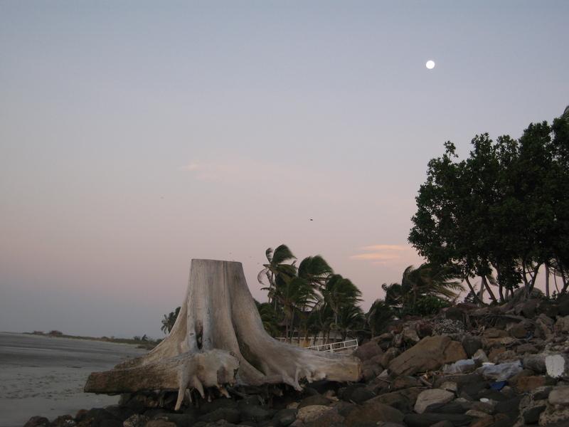 The Beach At Punta Chame...